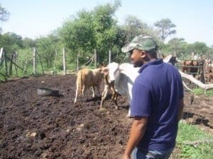 Gosiame Modise, one of the students supported by the Buhle Farmers' Academy.