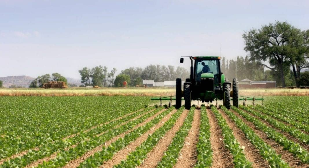 In February 2021, year-on-year tractor sales were up by 28% largely due to the favourable interest rate cuts of the previous year. Photo: Supplied/Food For Mzansi