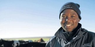 Black farmer In 11 years, Tshilidzi Matshidzula has grown a herd of 49 cows into a dairy producing up to 16 000 litres of milk a day from nearly 800 cows.