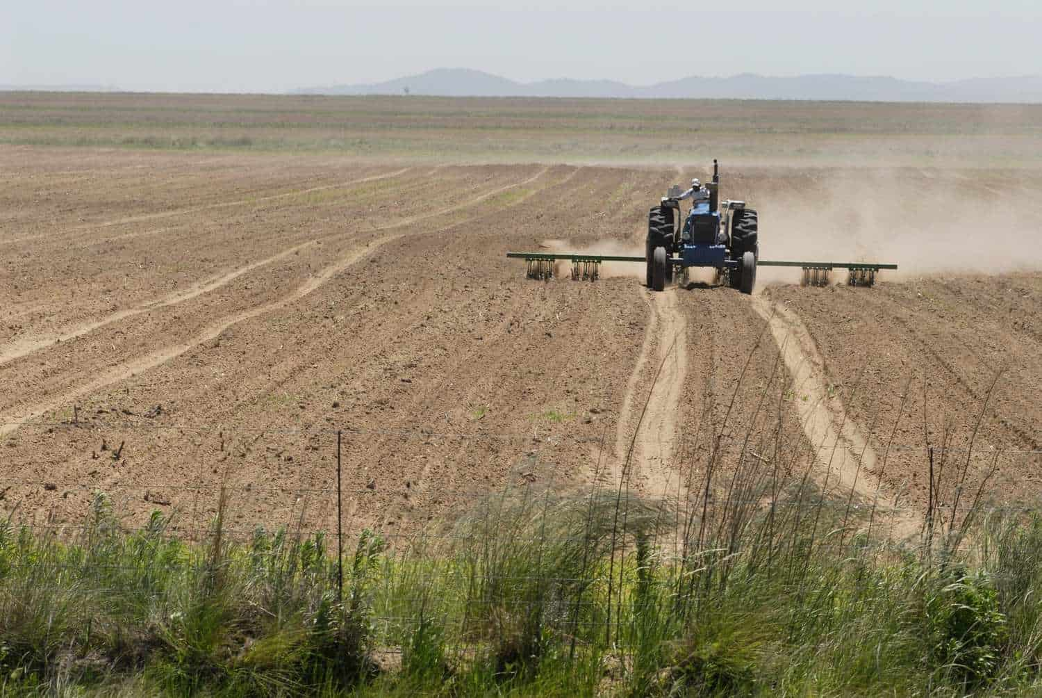 Drought disaster: Farmers across South Africa have been battling with the ongoing drought that has a negative impact on their farming operations. Photo: Supplied/Food For Mzansi