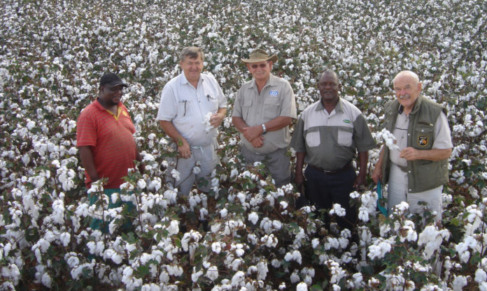 Award winning cotton farmer Frans Khambi Malela started farming with cotton in 2001.