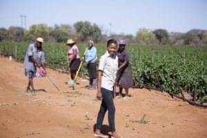 Mathlakana leases an 8 hectare farm and employs people from her own community.