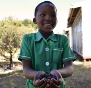 Earthchild Project has set worm farms at eight schools in the Western Cape.