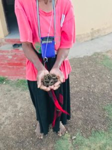 Mazosiwe says stepping barefoot out onto her land every morning has become her favourite thing to do.