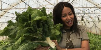 Dr Brylyne Chitsunge supplies vegetables to a number of supermarket chain stores.