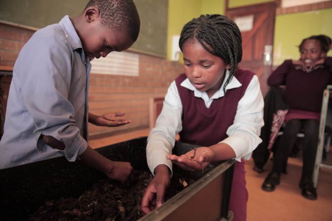 Earthchild Project teaches children how to create their own compost through worm farming which they can later use to grow their own food.