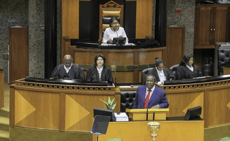 Finance Minister Tito Mboweni's maiden budget speech announced billions in support for new farmers. (Picture: Parliament of South Africa)