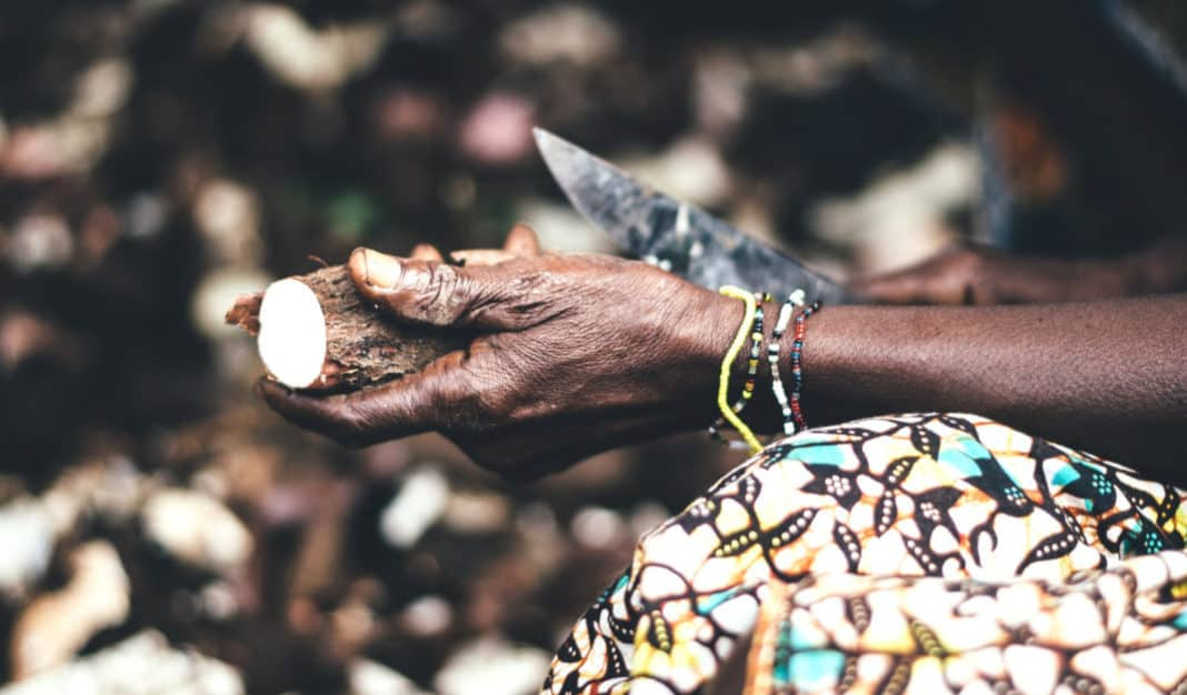 South Africa has a diverse range of indigenous food crops, which are a rich source of nutrition and is good for preventing chronic illnesses.