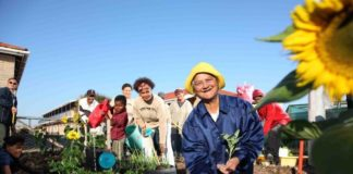 Through Soil for Life more than 30 000 gardeners, their families, friends and neighbours are now more food secure.