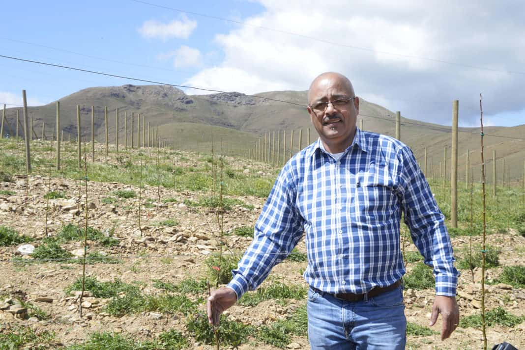 Fruit farmer André Cloete runs his company Altius Trading on leased land in Genadendal in the Western Cape. Photo: Carmé Naude