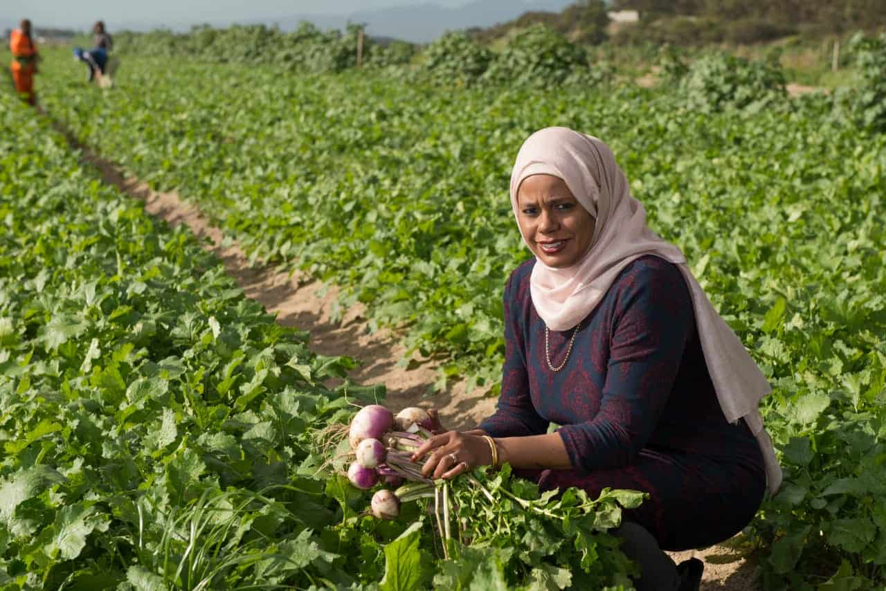 Wadea Jappie is an award-winning farmer and director of Chamomile Farming Enterprises situated, in one of Cape Town's largest townships, Phillipi.
