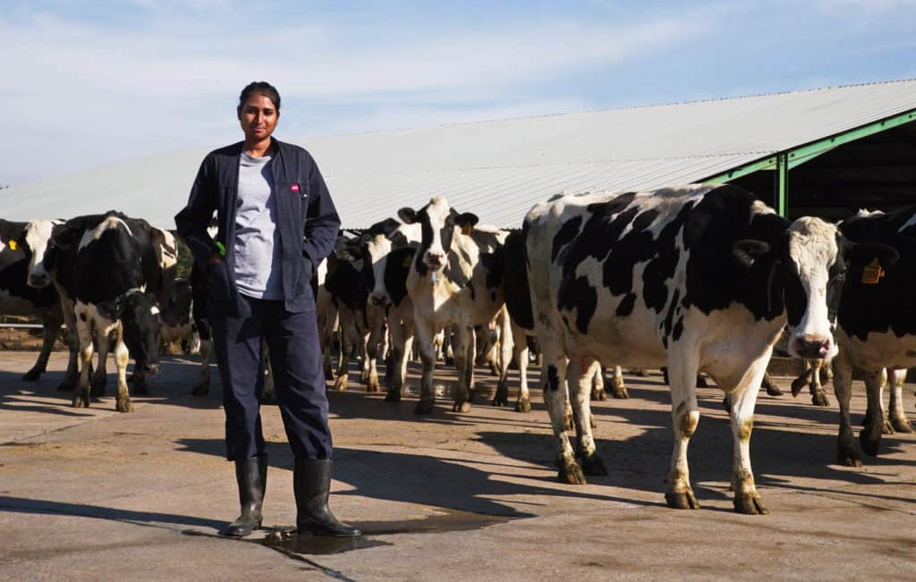Naiker successfully completed a two year farming internship on Ren Stubbs dairy farm in Howick, KZN.