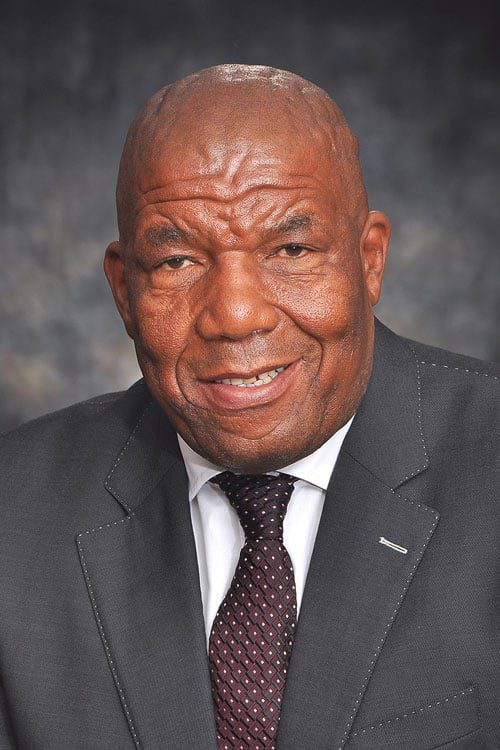 Mpumalanga MEC of Agriculture, Rural Development and Land Administration Vusi-Shongwe