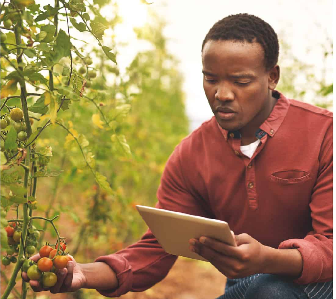 Generation Africa has announced its GoGettaz competition, that will award approximately R1,5 million in prize money to two exceptional business ventures in the agri-food sector.