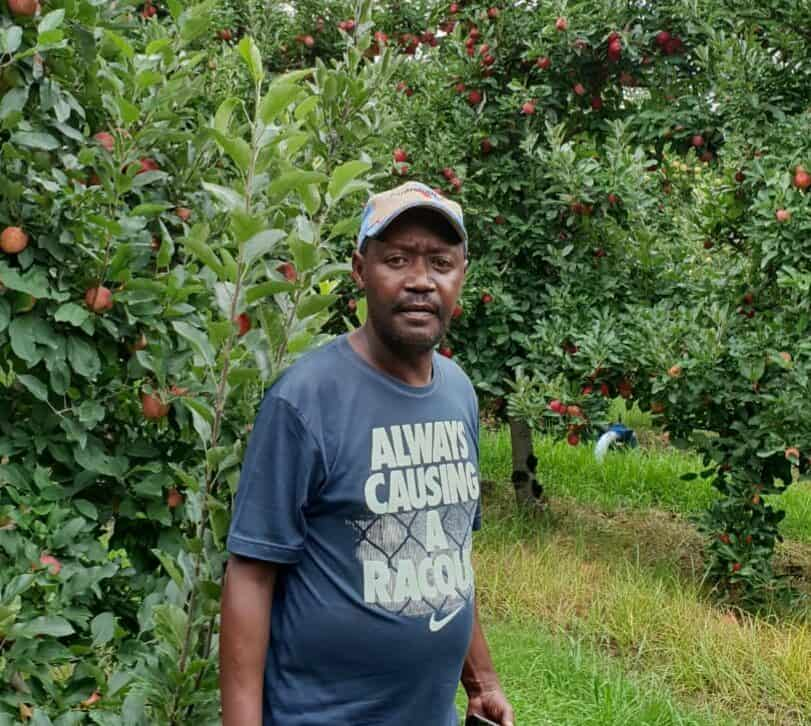 Patrick Cornelius and 103 community members were the beneficiaries of The National Government's LRAD Farm Scheme in 2008 whereby they received the 669ha farm Appelkloof, located just outside the town of Haarlem.