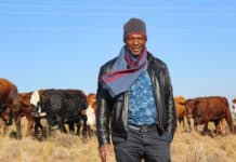 Tsabello Mapupa farms with livestock on his late brother's land in Rosendal, about 45km away from Ficksburg in the Free State.