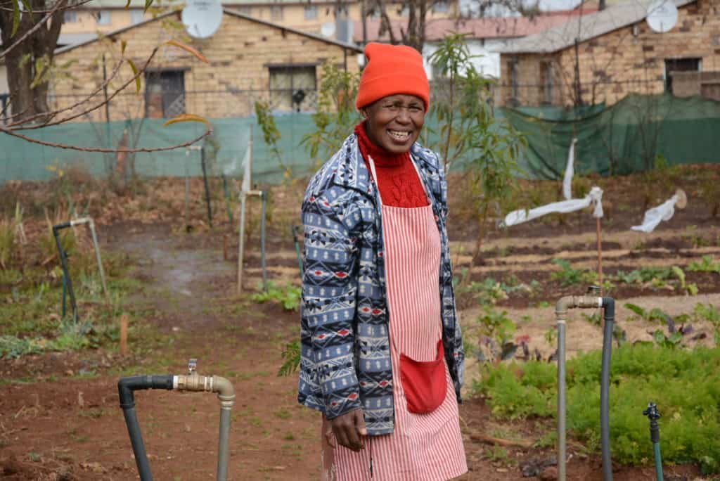 Behind Sediba Thuto Primary in Soweto, Gogo's are growing grow carrots, beans, peas, spinach, cabbage, brinjals, chillies, peppers, spring onions, leeks, tomatoes and a variety of herbs.