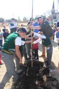 Tree planting session in Oranjeville in the Free State.