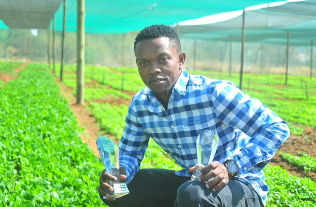 Thabo Ramaphala started small and today he owns a 6.8-hectare mixed farming operation in Cullinan with 15 000 chickens, herbs, parsley as well as baby spinach and watermelons.