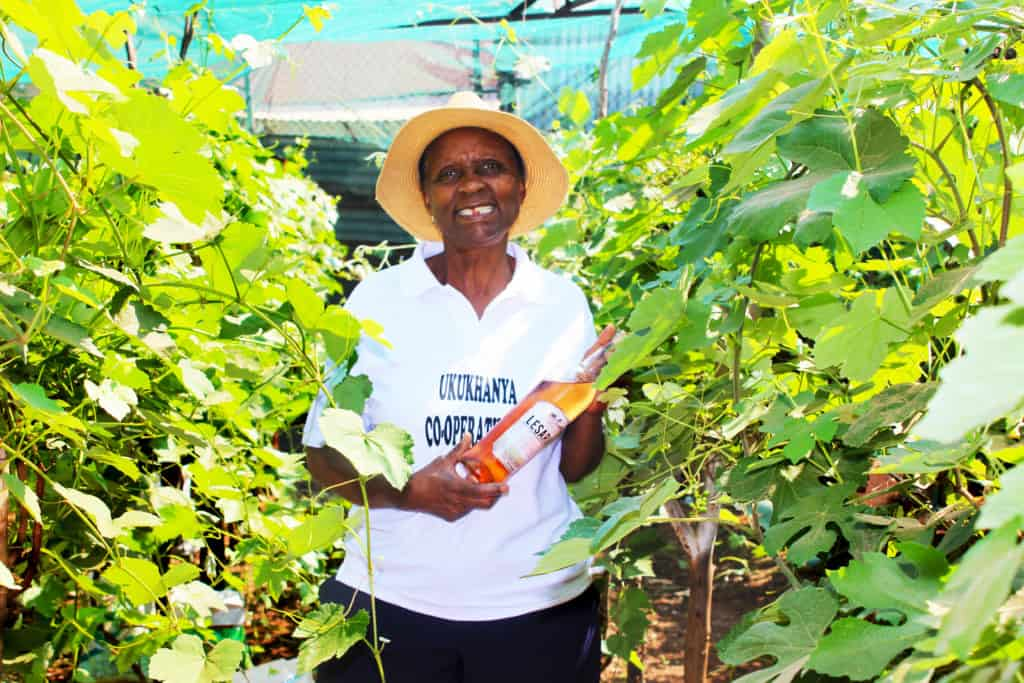 A majority of the community members in Sebokeng could not believe that Susan Marieti and her friend, Ria Letoba were producing quality wine in a backyard. Photo: Funiwe Ngwenya