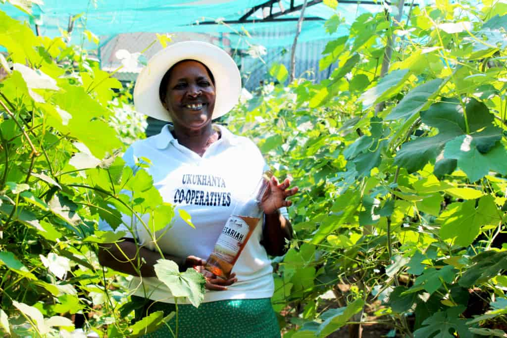 Owner and founder of Lesaria Wines, Ria Letoba started her own wine production in 2015 after doing a quick google search and has bottled over 132 bottles of rosé wine. Photo: Funiwe Ngwenya