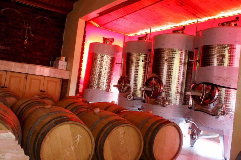 Gauteng Department of Agriculture and Rural Development (GDARD) gifted the cooperative with fermentation tanks and barrels to store the wine in.