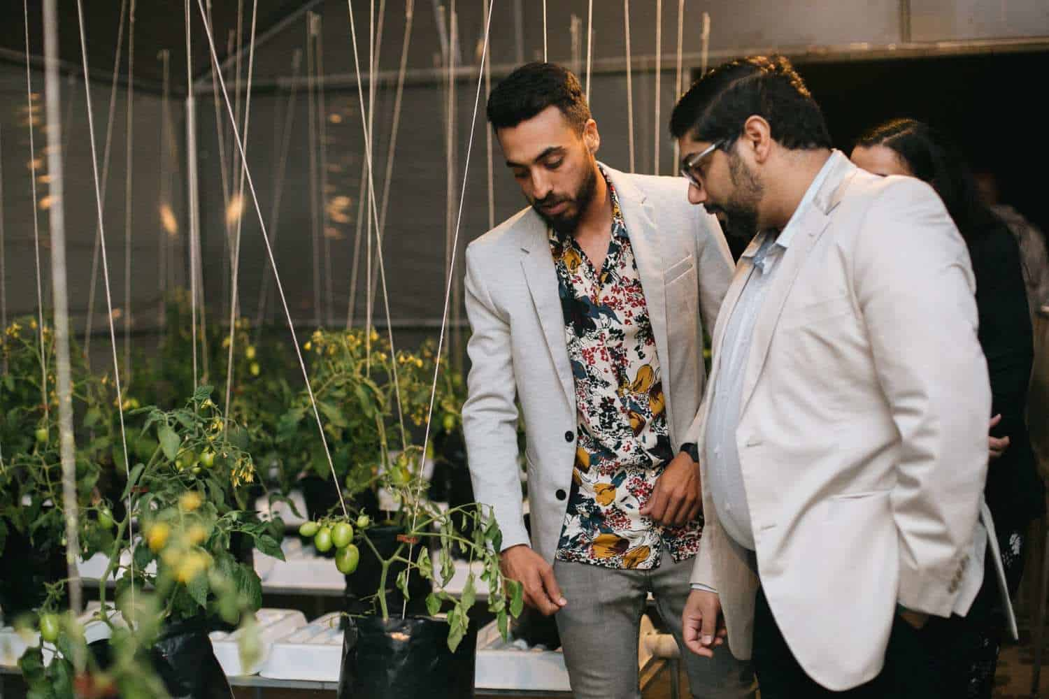 Semi-provincial professional batsman Zakir Kathrada owns a hydroponics farm on the rooftop of The Whippet Coffee in the heart of Melville in Johannesburg.