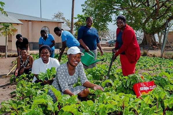 The vegetables that are grown in the Swa Vana garden not only benefit the children, but also a small portion of the community.