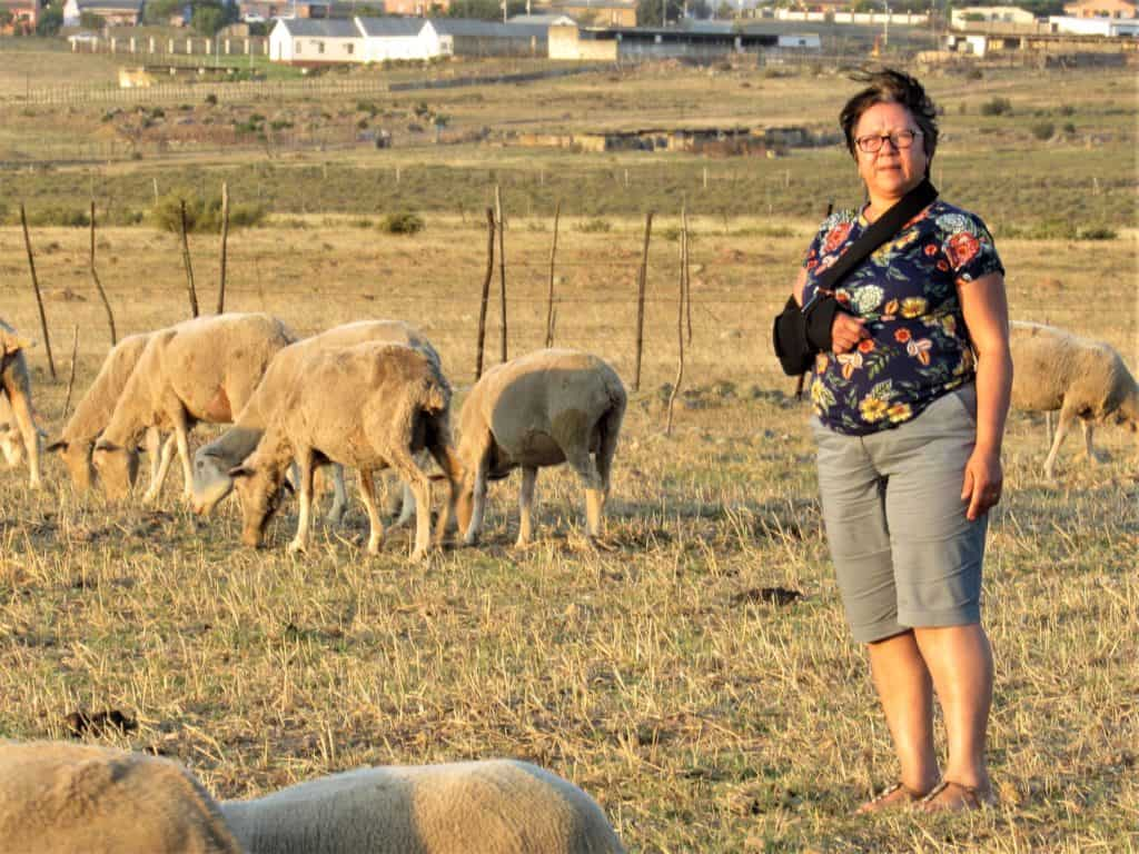 Therecia Patinece took over the farm from her late father-in-law, Japie Patience who started farming with 20 sheep in 1969.