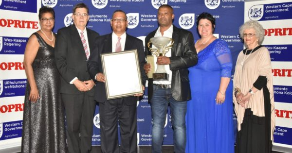 Olive oil master Francois Cilliers wins Western Cape Prestige Agri Award - Food For Mzansi