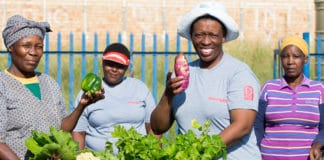 Phahamang Basadi Community Gardeners pictured from left to right: Julia Maoke, Selina Lethope, Meriam Mokgatla and Hester Beneer.