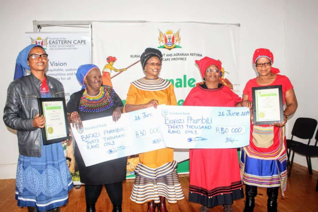The women of Bafazi Phambili Women's Cooperative raise chickens to slaughter, which they then sell to various markets in Eastern Cape.