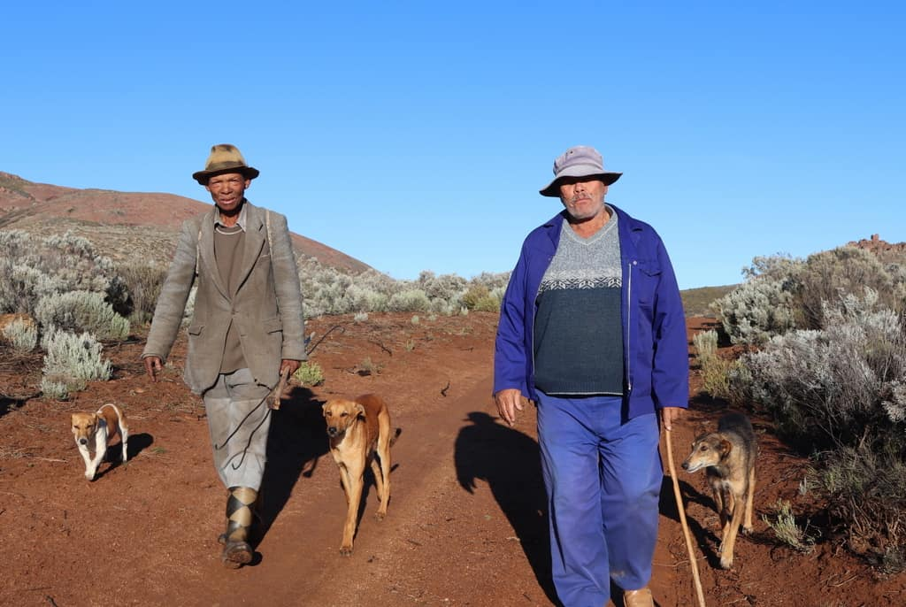 An early morning departure for Oom Koos Paulse, Tom Gert Brandt and three dogs starting their journey from the summer stock post in the uplands in Blokdrif. Photo: Clement Cupido.