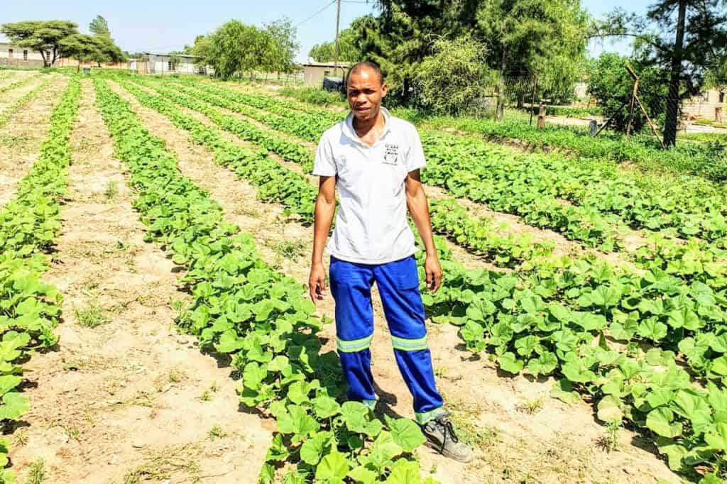 This successful butternut farmer looks forward to opening his own school of agriculture as well as a nursery where he can do agro-processing with aloe oil.