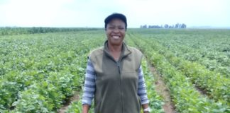 It took Mampe Mmeregi (60) more than 24 years to pursue her agricultural aspirations. Today. she owns a piggery and owns Temaretha Agriculture Training School in Gauteng.