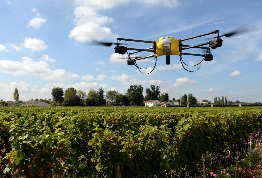 Artificial intelligence: The use of technology and innovation are key aspects of future food security and a sustainable future. Photo: Supplied/Food For Mzansi