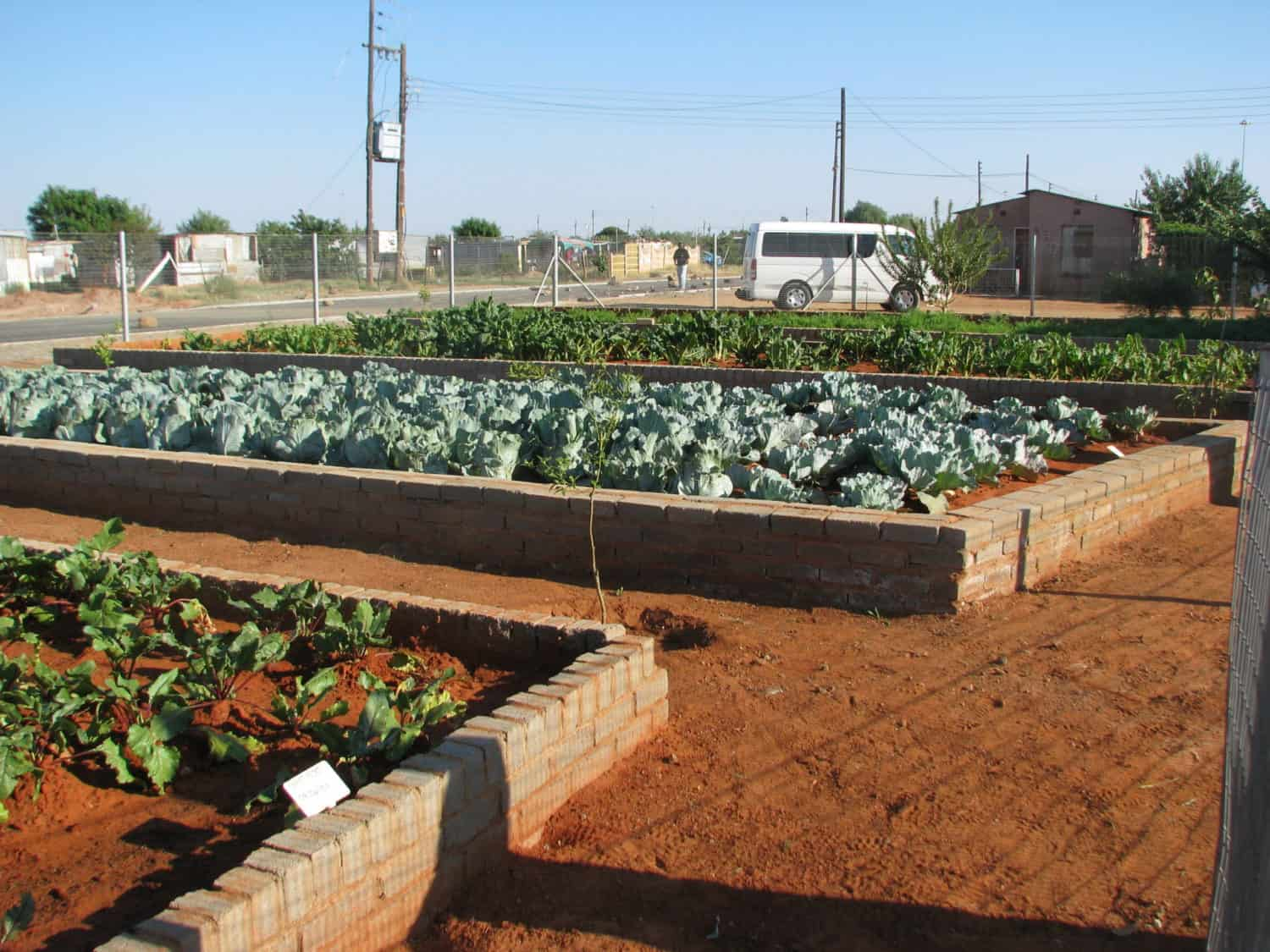 Six garden beds are used to feed children and adult HIV/Aids patients