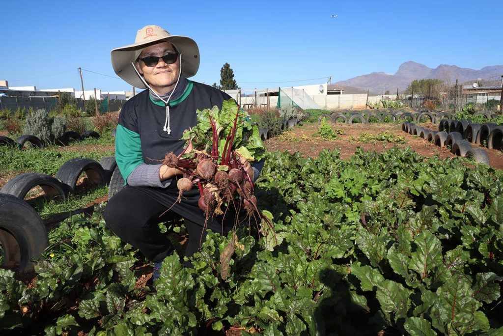 Martha Jaftha holding her freshly harvested beetroot in one of the vegetable gardens in Avian Park.
