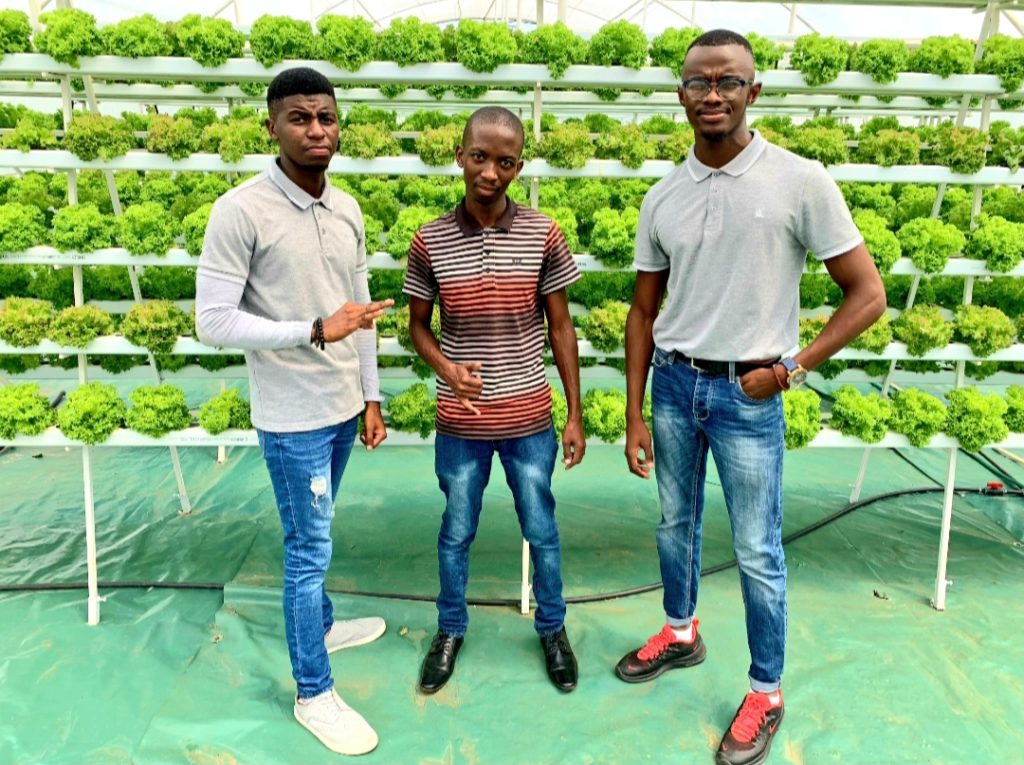Pictured: Kutlwana Tisane (co-owner), and Percyval Alset (co-owner) with one of their clients in the middle at their hydro farm based in Sebokeng, Gauteng