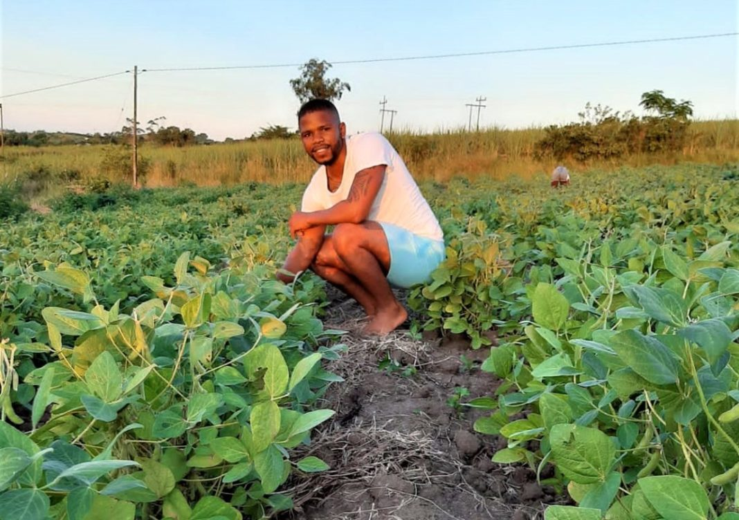 Soybean farmer and advocate of indigenous crops Qinisani Qwabe is on a mission to get people excited about native veggies, like amadumbe and cowpea.