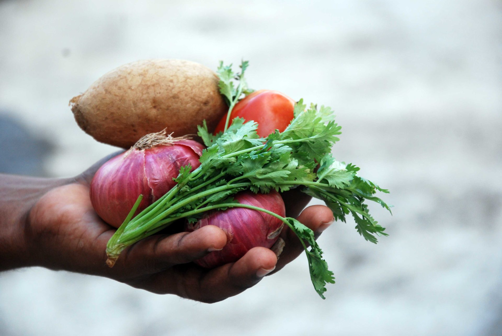 Amidst the coronavirus pandemic, farmers in Mzansi remain committed to feeding the nation.