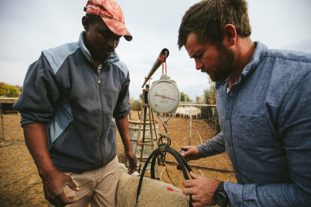 Sheep farmers Juan Louw and Demetrius Sas, who farm in the baked Karoo landscape, want to show South Africans that despite difficulties it is possible to unite and flourish. Picture: Willem van der Berg/Landbouweekblad