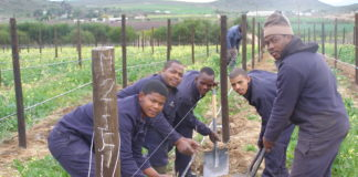 A brand-new, 100% black-owned and managed wine producer is being born.