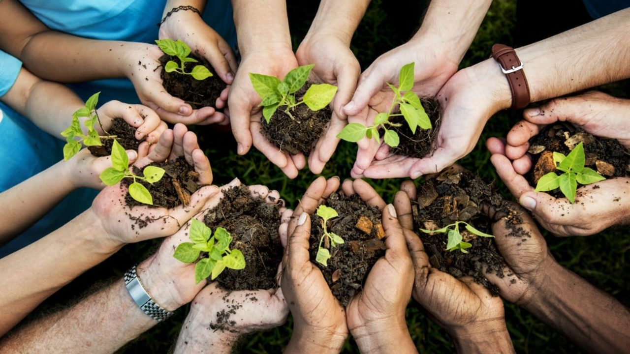 Restoration of natural capital