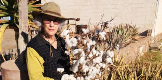 Susan van der Merwe (60) is the reigning cotton queen of the Northern Cape. Photo: Supplied.