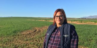 Alfreda Mars, an award-winning grain and sheep farmer. Photo: Food For Mzansi