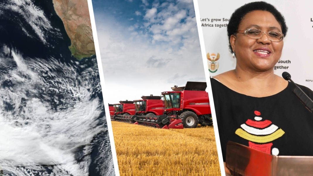 Thoko Didiza, the Minister of Agriculture, Land Reform and Rural Development. Photo: SA Government
