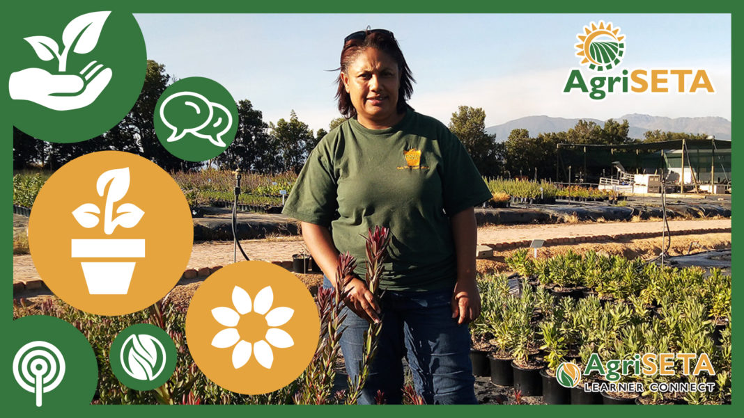 Jacky Goliath, horticulturist and managing director of De Fynne Nursery outside Paarl in the Western Cape.