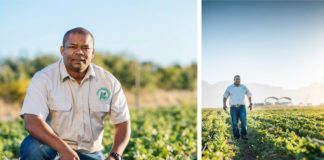 Vegetable farmer Sydney Claassen (40) sacrificed a lot to pursue a career in agriculture. Today he runs a successful 7-hectare farm in Stellenbosch, Western Cape. Photo: Sydney Claassen Facebook.