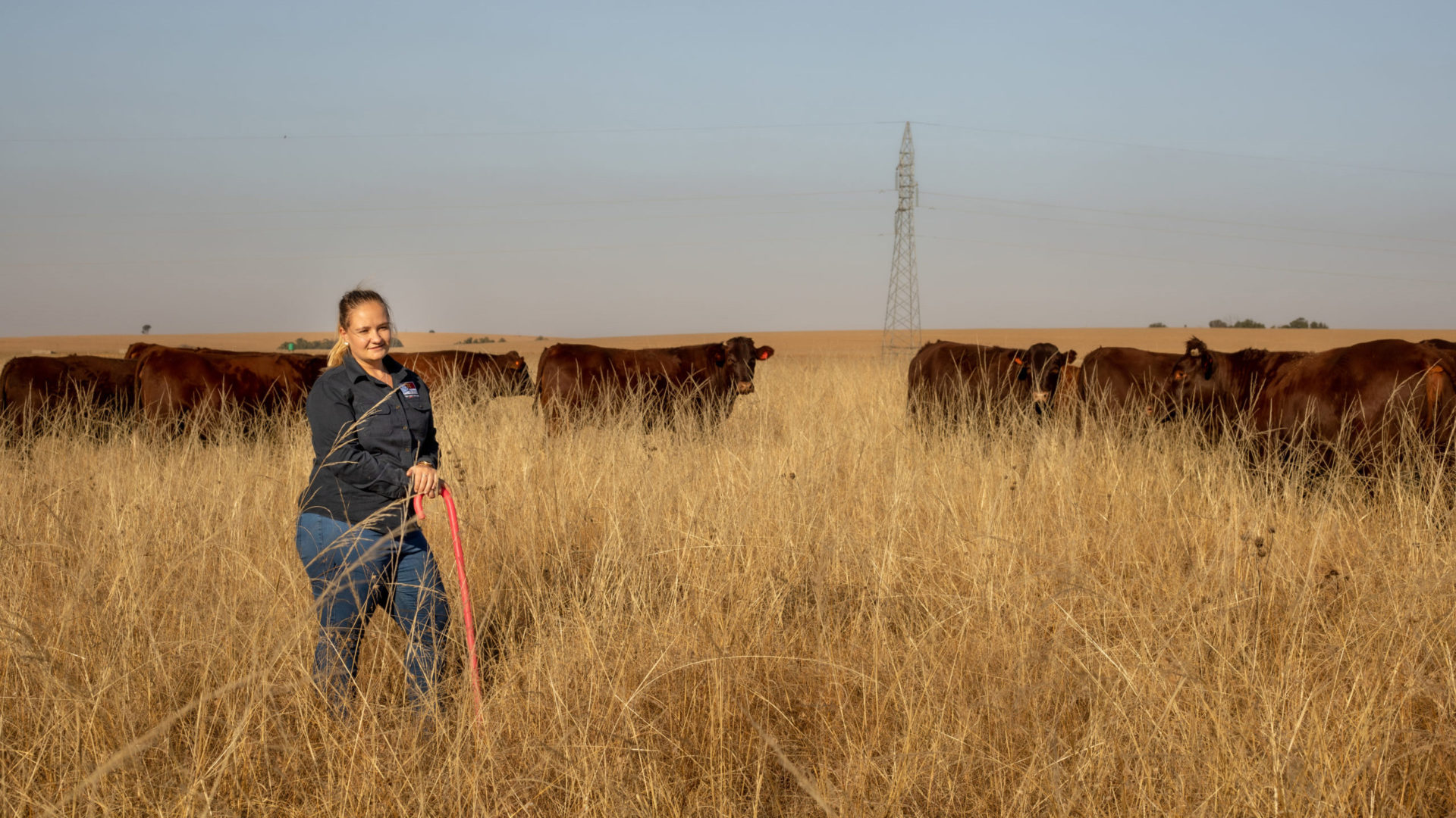 Annalea Van Niekerk (25) stands firm as the only female contender among this year's Free State Agriculture (FS Agri) Young Farmer of the Year. Photo: Supplied